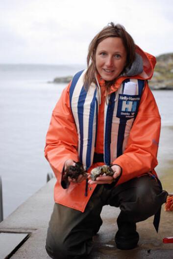 Forsker Pia Norling studerer stillehavsøsters og blåskjell i Oslofjorden. (Foto: Lena Näslund)