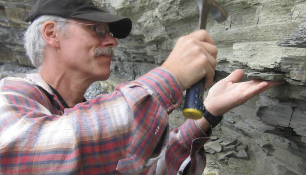 Geolog Paul Olsen fra Columbia University tar prøver av stein fra tida rundt masseutryddelsen for 201 564 000 år siden. Kevin Krajick/Earth Institute
