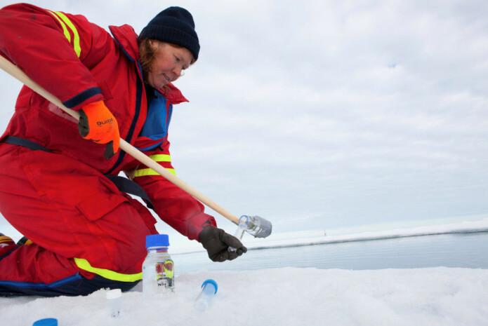 Agneta Fransson, havforsker ved Norsk polarinstitutt, sier den nye studien er interessant, men savner mer informasjon om havkjemien på stedene prøvene er tatt.