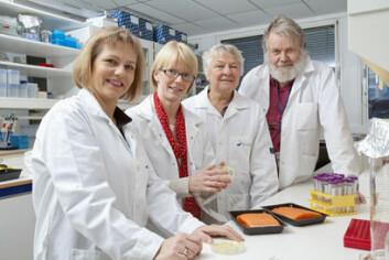 Forskere fra flere ulike fagfelt i Nofima har jobbet sammen om denne studien. Fra venstre Turid Mørkøre, Anlaug Hanssen, Marit Rødbotten og Per Lea. (Foto: Kjell J. Merok)