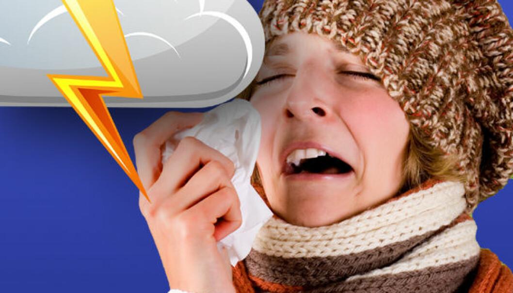 Varsler influensa med værmodeller
