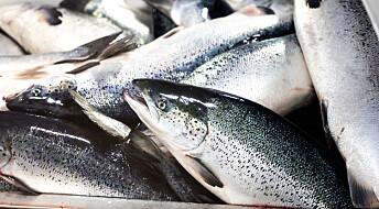 Mindre antibiotikabruk i norsk fiskeoppdrett