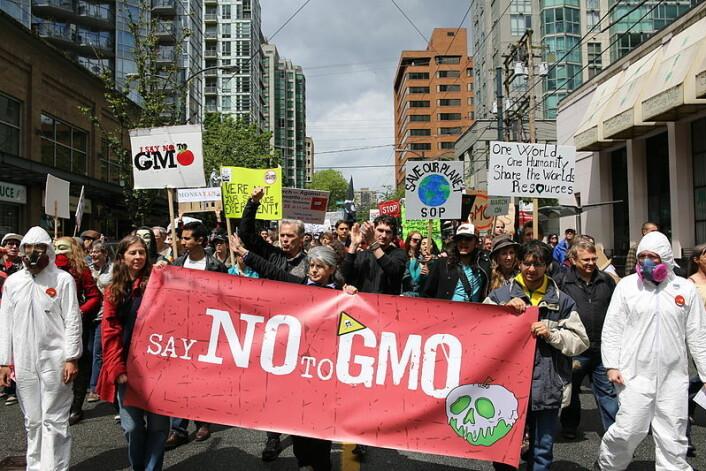 Protest mot GMO-produsenten Monsanto, i Vancouver i 2013. (Foto: Rosalee Yagihara/Wikimedia Commons)