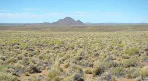 Mer tørke kan føre til plutselige endringer i allerede tørre områder, ifølge studie
