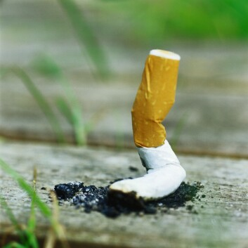 """""""Hvordan får man røykere til å stumpe sigaretten? Det er ikke noe én vitenskap kan svare på. En løsning krever et tett samarbeid mellom ulike fagfelt. (Foto: www.colourbox.com)"""