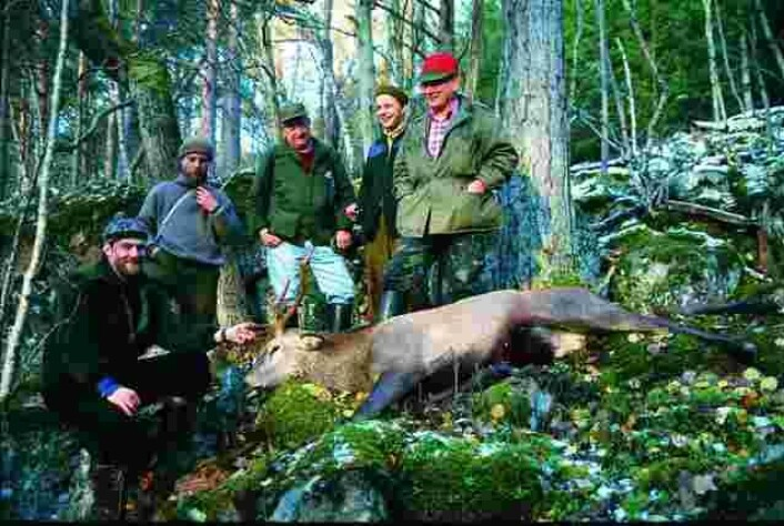 Hjortejegerne jakter vanligvis i jaktlag, og som oftest er medlemmene i jaktlaget venner og familie. (Foto: Erling Meisingset)