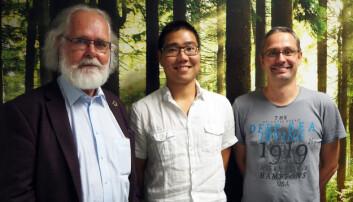 Forskerne bak den nye modellen: Nils Chr. Stenseth (t.v.), Kotaro Ono og Øystein Langangen.