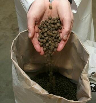 Oppdrettslaks og -ørret spiser tørrfôr formet som pellets, som inneholder en rekke oljer og proteiner.