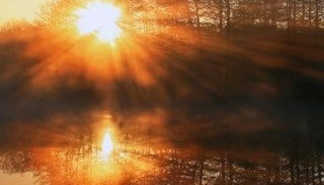 Morgenlys reduserer angst