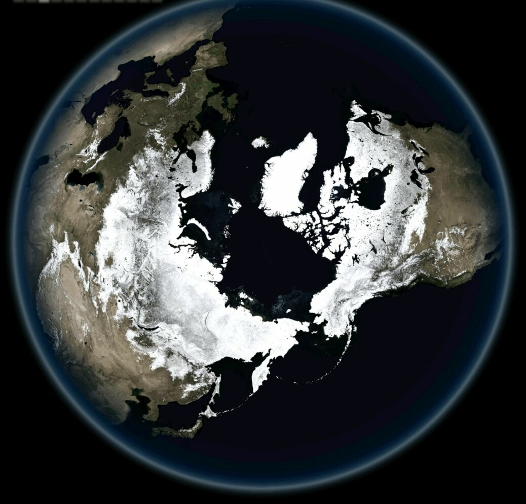 Skogene i den nordlige delen av jordkloden lagrer CO2. Derfor må vi ta godt vare på dem.