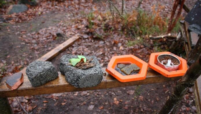 Bildet er fra Torridal skole i Kristiansand, som er et av eksemplene i studien på uteområder. I naturen kan barna selv bestemme hvordan det de finner kan brukes til å leke med, i motsetning til funksjonsbestemte lekeapparater og gummidekker.