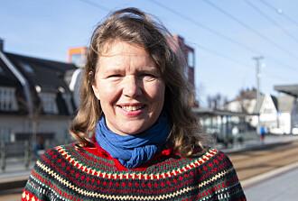 Professor Akkelies van Nes har forska på byutvikling med Mindemyren som område.