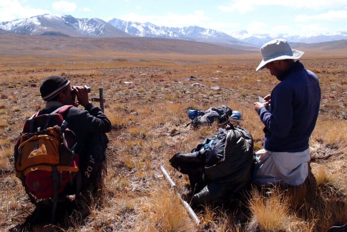 Feltbiologer har installert viltkameraer og samler også inn DNA-prøver i Deosai nasjonalpark.