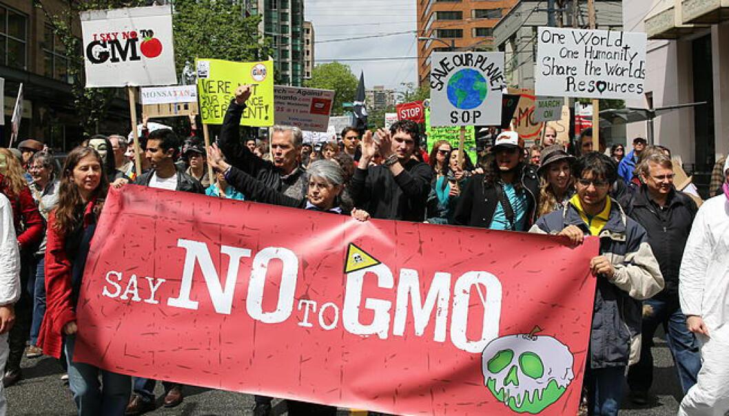 Protest mot GMO-produsenten Monsanto, i Vancouver i 2013. Rosalee Yagihara/Wikimedia Commons