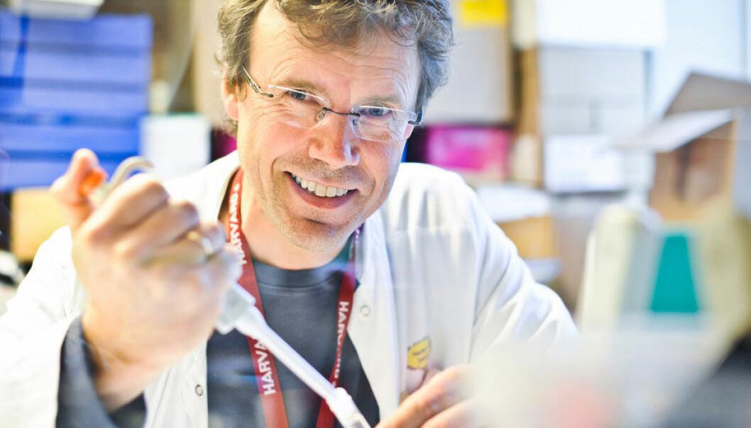 Professor Pål Rasmus Njølstad en del av en stor internasjonal forskergruppe som står bak funnet av den sjeldne mutasjonen, som gir beskyttelse mot diabetes type 2. Njølstad er daglig leder ved KG Jebsen Senter for diabetesforskning i Bergen. Øyvind Blom, Haukeland universitetssykehus
