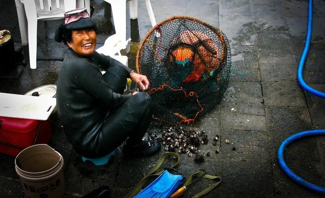 Fisking blir ansett som en mannsdominert bransje, ifølge forskerne. Også i fattige land. Her er en fisker som dykker etter skjell på Jeju Island i South Korea.