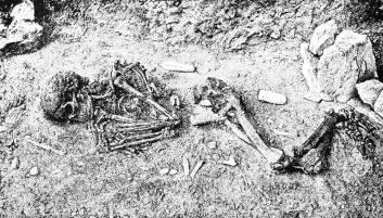 Det er sjelden vi finner fulle skjelletter eller mumier etter mennesker som levde for veldig lenge siden. Men med DNA-analyser kan forskerne nå likevel finne ut hva slags kjønn forhistoriske personer hadde. (Illustrasjonsfoto: Wikimedia Creative Commons)