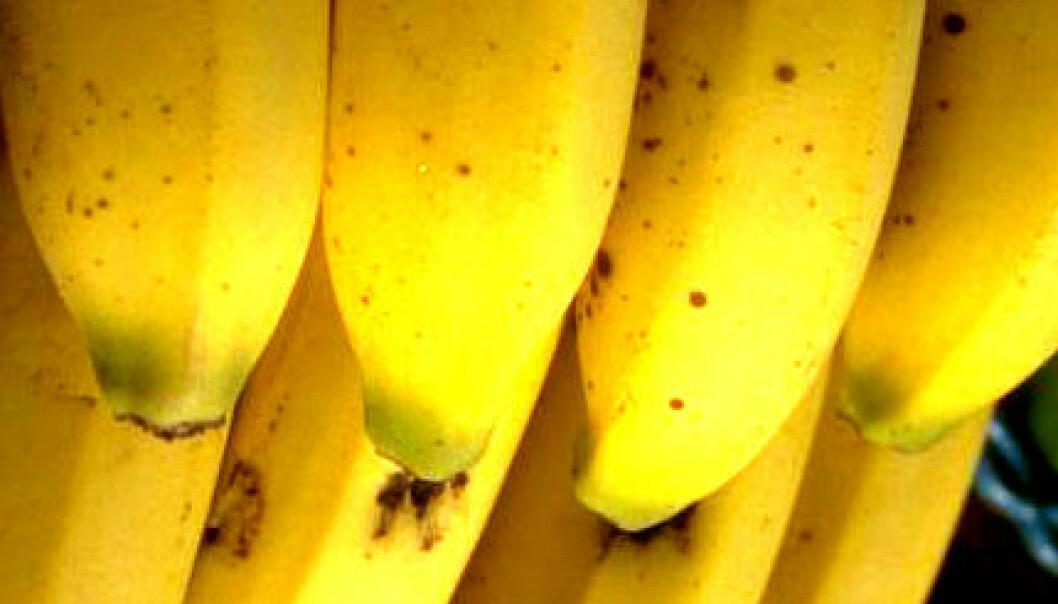 Ny supersterk plast laget av frukt