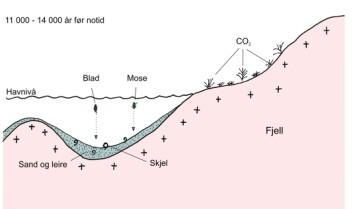 """""""Et marint havbasseng for 11 000 - 14 000 år siden. Planter som gjennom fotosyntesen har tatt opp karbon fra atmosfæren og marine skjell som har tatt opp karbon fra sjøvannet, faller til havbunnen."""""""