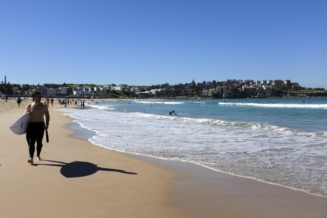 Verdens strender sliter på grunn av klimaendringene. Strender i Australia og lavtliggende øynasjoner er særlig i faresonen. Her fra den populære surfestranden Bondi Beach i Sydney.