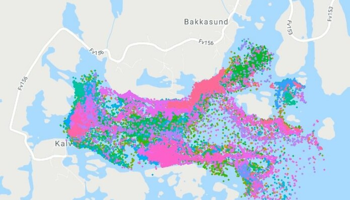 40 torskar i 40 fargenyansar – og posisjonane deira i februar og mars 2019. Slik kan torskane sjå ut på kartet, utan forstyrring.