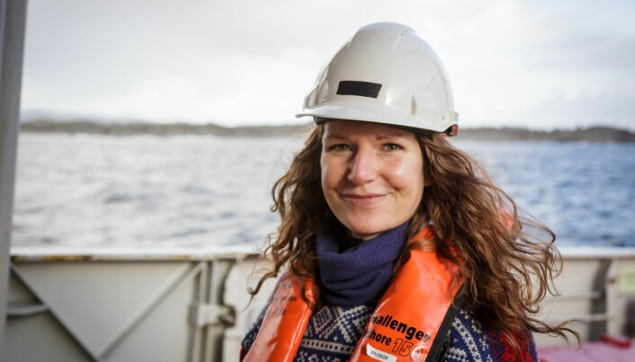 – Vi ser føre oss tre moglege utfall av bråket, seier Havforskar Tonje Nesse Forland.
