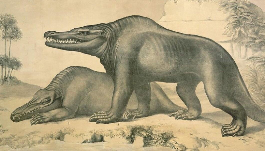Dette var en av de tidlige tegningene av dinosaurer.