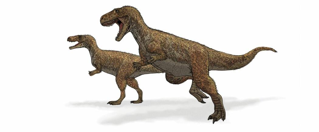 Megalosaurus var faktisk en tobeint kjøtteter.
