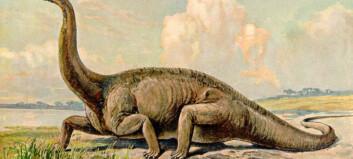 Dinosaurene var trege og late. Så fikk de muskler og fart.