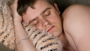 Søvn: Før delte vi natta i to