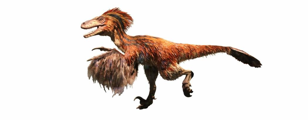 Slik tror man at den samme dinosauren egentlig så ut.