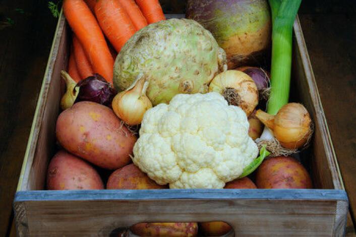 Bær, rotfrukter, grønnsaker, grovt brød og rapsolje er en del av den nye nordiske hverdagsmaten. (Foto: Colourbox)