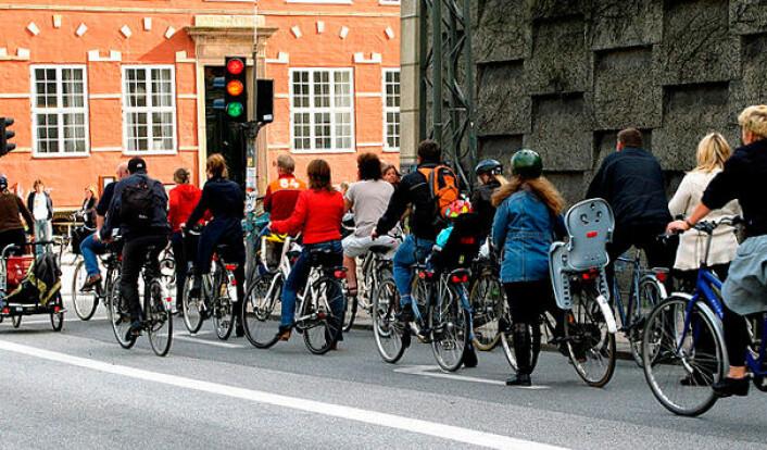 I København skjer rundt 40 prosent av all transport på sykkel. (Foto: Mikael Colville-Andersen, Wikimedia Commons)