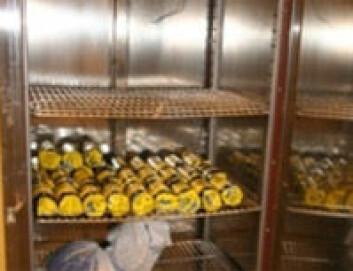 """""""Oppbevaring av prøver i kjøleskap ved 8ºC for å etterligne temperaturen på bakken."""""""