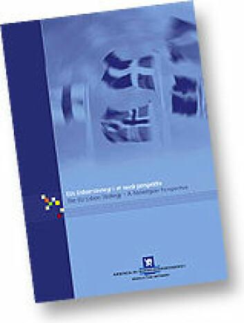 """EUs Lisboastrategi i et norsk perspektiv, rapport fra Nærings- og handelsdepartementet"""