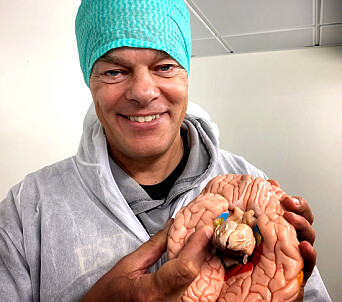 """A brain that has been deeply affected by Alzheimer's disease can shrink to the weight of an orange. """"We know where in the cortex the disease first manifests itself — deep in the brain in an area the size of a fingernail that is called the entorhinal cortex,"""" says Edvard Moser."""