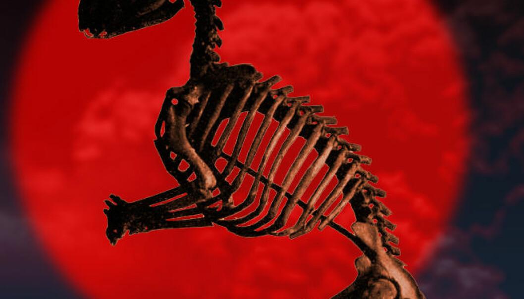 Gumlet seg inn i solnedgangen: Hadrosaurus var blant planteeterne som minket i antall de siste 12 millioner årene før den globale katastrofen i slutten av kritt-tiden. (Fotomontasje: forskning.no/Wikimedia Commons)