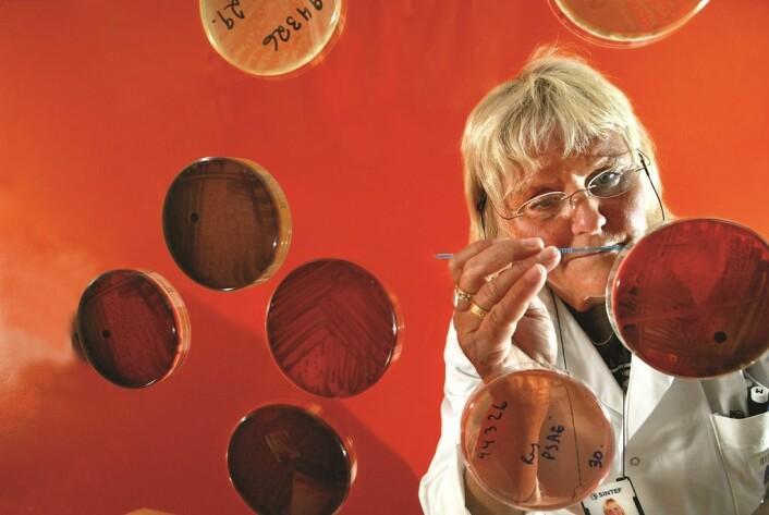 Lenge var det en gåte. Nå har mikrobiolog Catrine Ahlen påvist hvordan legionellasmitte i vannforsyningssystemer kan motstå de foreskrevne mottiltakene. (Foto: Rune Petter Ness, Sintef)