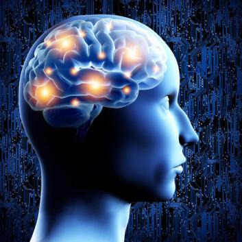 Hva skaper bevissthet, følelser og tanker? I lang tid har forskere trodd at disse oppstår i hjernens nerveceller, men en ny undersøkelse peker på at det også kunne være noen helt andre celler. (Foto: Colourbox)