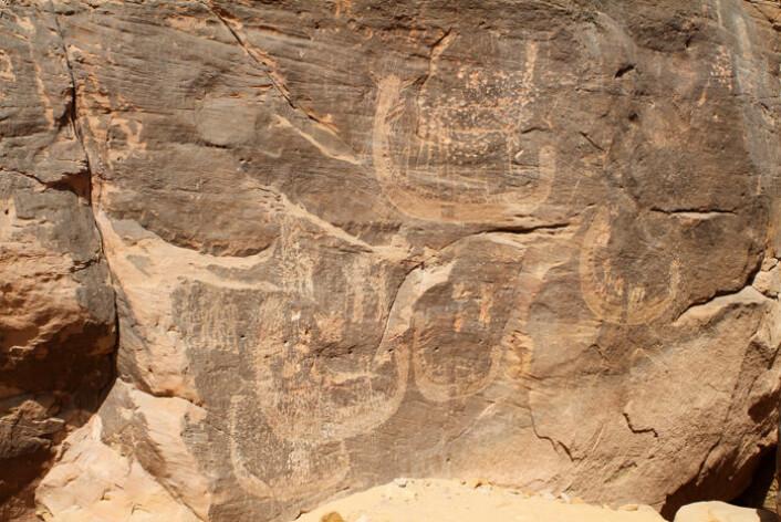 Bergkunst av båter funnet i det sørlige Egypt kan romme de eldste framstillinger av en farao. (Foto: Stan Hendrickx, John Coleman Darnell og Mariela Carmela Gatto)