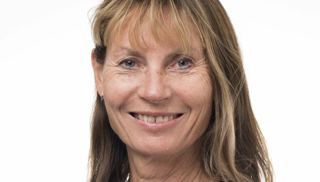 Kari Bø er professor ved Norges idrettshøgskole. Hun er ekspert på bekkenbunnstrening- og plager.