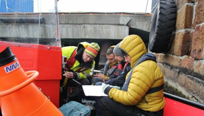 Fra befaringen langs Oslos havnepromenade. Fra venstre: toktleder Mats Walday, dronepilot Harry Simmons, Bymiljøetatens Thomas André Ruud og landskapsarkitekt Elin T. Sørensen.