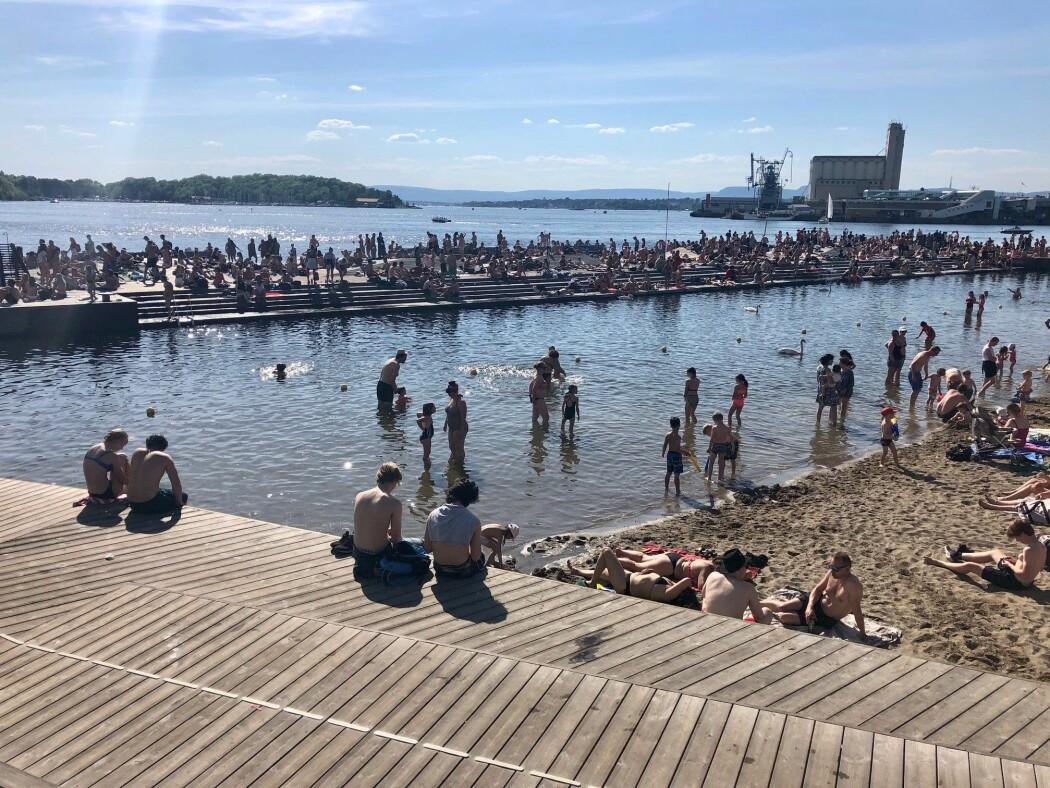 Oslofjorden er som regel ren nok til å bade i, men urbanisering av strandlinjen gjennom tidene har utkonkurrert det marine naturmangfoldet flere steder.