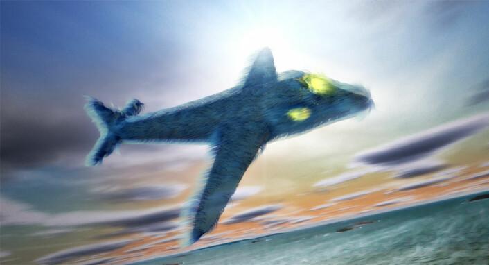 SAS Furliner P-390 glider majestetisk inn over horisonten og går inn for landing en sen ettermiddag. (Foto: (Illustrasjon: Per Byhring))