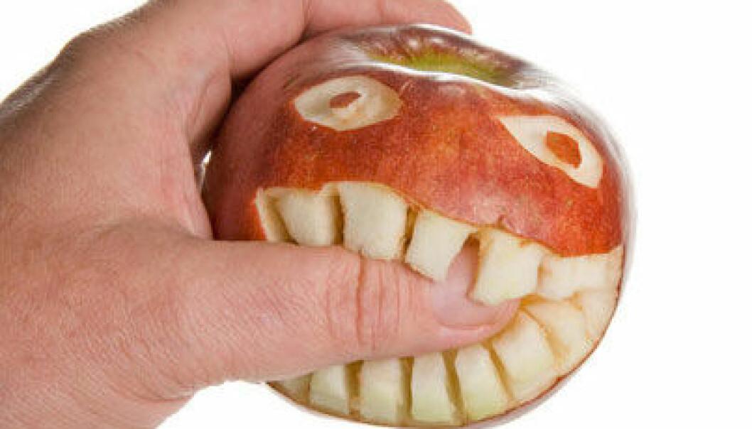 Folk med irritabel tarm tåler ikke den maten vi blir anbefalt å spise, som for eksempel epler, pærer og vannmelon. Colourbox.com