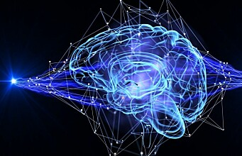 Digital brains are key in understanding how the human brain works, and how it can be fixed when broken