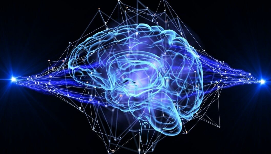 Researchers are using computer models to understand how the brain works.
