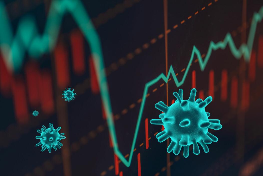 Hva bør vi forvente oss? Kan vi risikere en ny finanskrise? Eller blir det bare et raskt fall, og så er hjulene i gang igjen?
