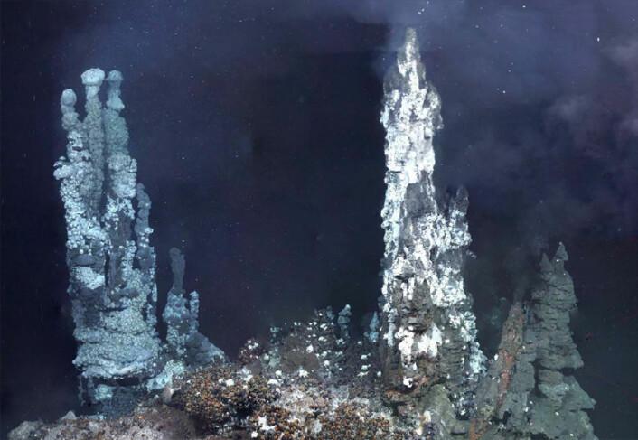 Black smokers (svarte skorsteiner) er mineraler rundt gassutslipp fra undersjøiske vulkaner. Disse svarte skorsteinene ligger i et område som kalles Elfenbenstårnet på East Scotia Ridge. Her lever underlige livsformer som blant annet ernærer seg på svovelforbindelser i gassene. (Foto: Leigh Marsh, University of Southampton, Southampton)