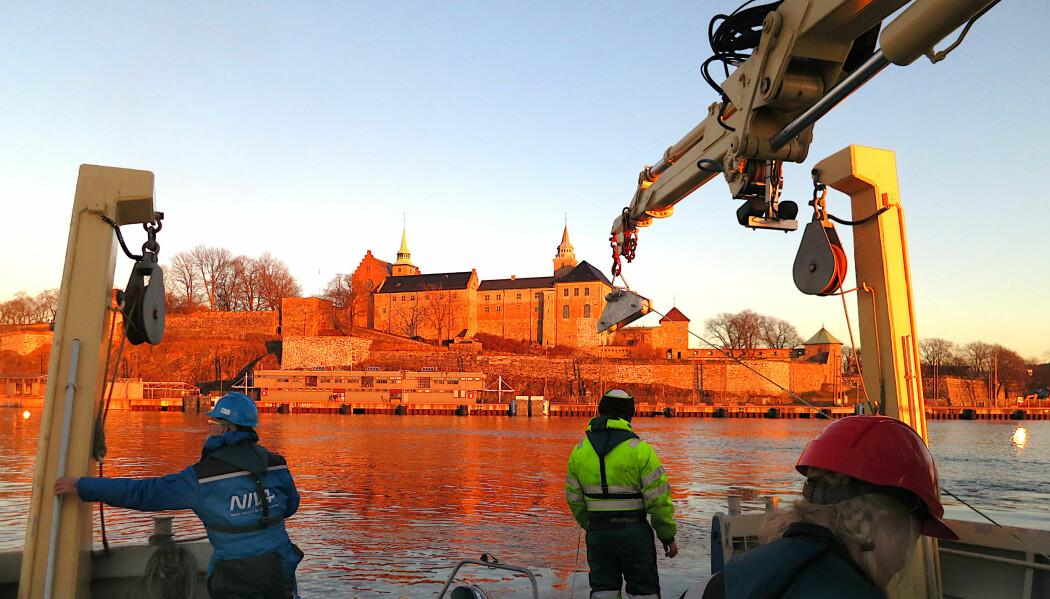 Oslo er et av havneområdene som har blitt ryddet opp.